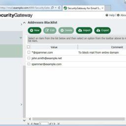 SecurityGateway8