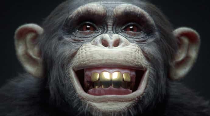 nki-winimax-monkey-vray