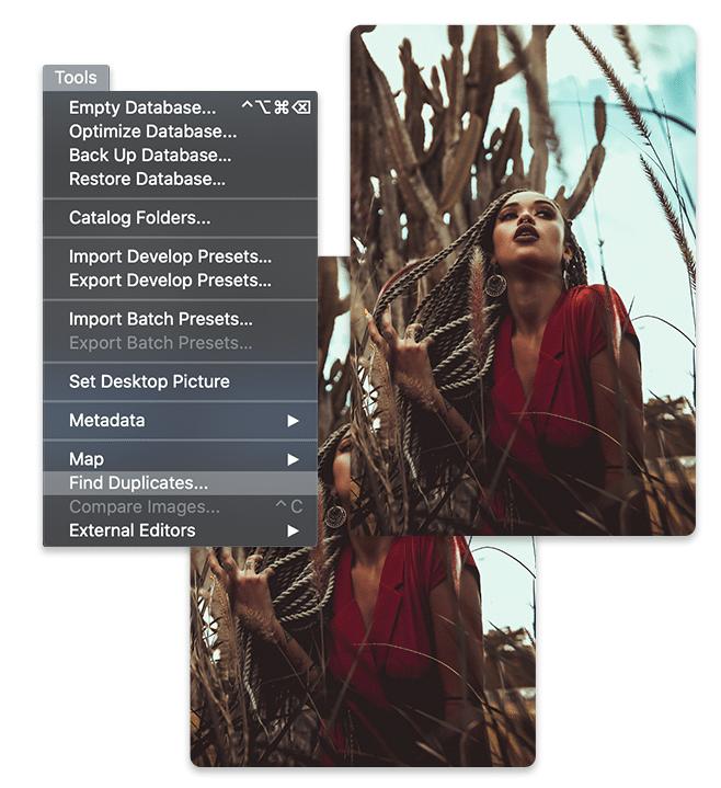 PhotoStudioMac7-DAM-FindDuplicates