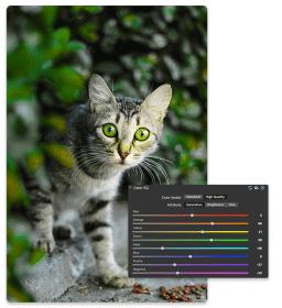 PhotoStudioMac7-Develop-ColorEQ