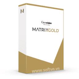 MatrixGold logo